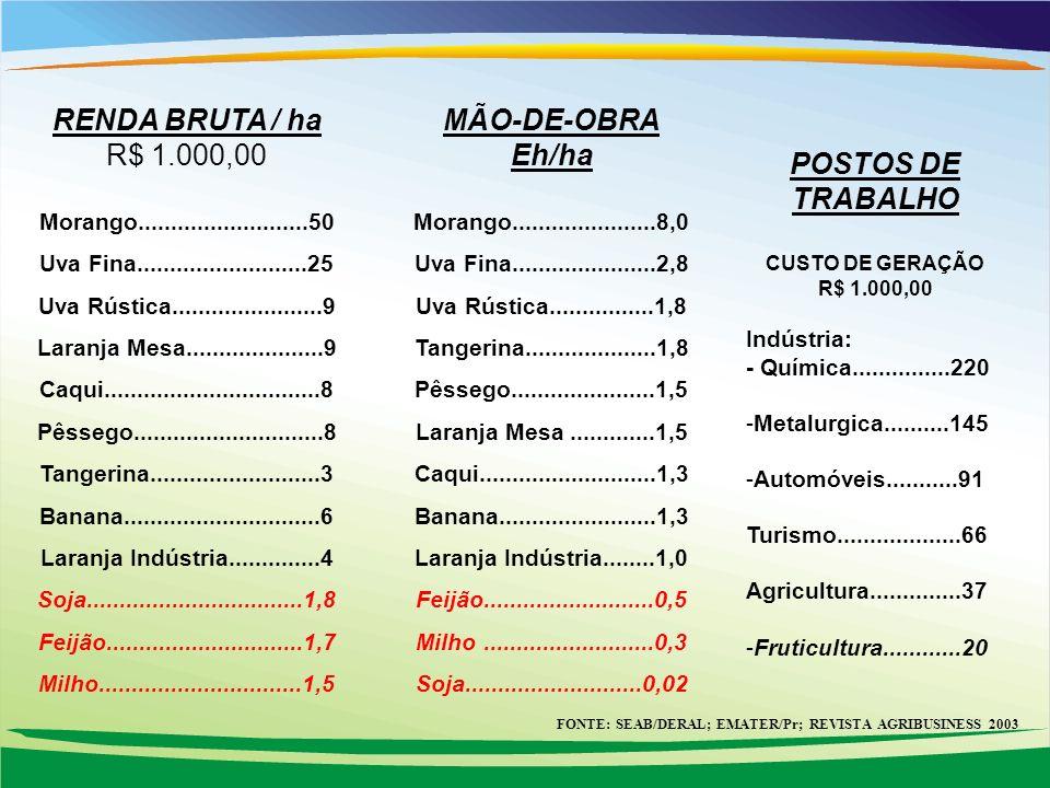 FONTE: SEAB/DERAL; EMATER/Pr; REVISTA AGRIBUSINESS 2003 RENDA BRUTA / ha R$ 1.000,00 Morango..........................50 Uva Fina.....................