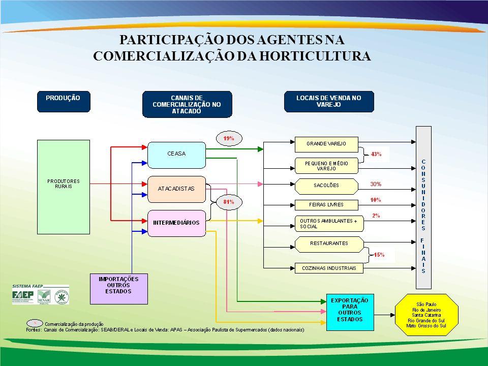 PARTICIPAÇÃO DOS AGENTES NA COMERCIALIZAÇÃO DA HORTICULTURA