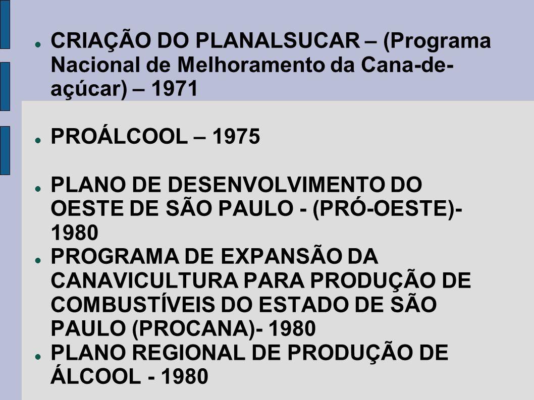 CRIAÇÃO DO PLANALSUCAR – (Programa Nacional de Melhoramento da Cana-de- açúcar) – 1971 PROÁLCOOL – 1975 PLANO DE DESENVOLVIMENTO DO OESTE DE SÃO PAULO
