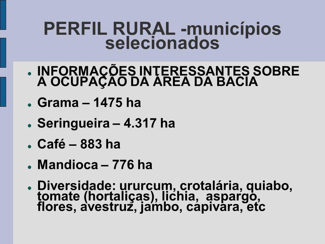 PERFIL RURAL -municípios selecionados INFORMAÇÕES INTERESSANTES SOBRE A OCUPAÇÃO DA ÁREA DA BACIA Grama – 1475 ha Seringueira – 4.317 ha Café – 883 ha