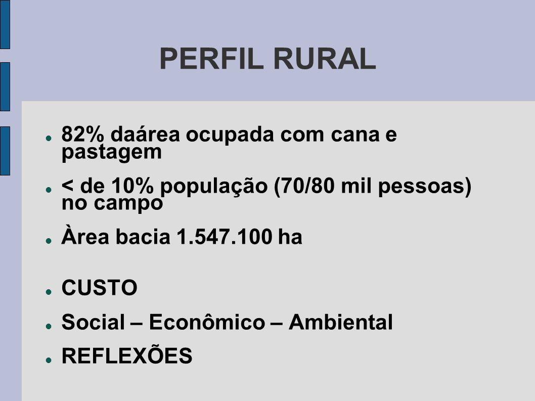 PERFIL RURAL 82% daárea ocupada com cana e pastagem < de 10% população (70/80 mil pessoas) no campo Àrea bacia 1.547.100 ha CUSTO Social – Econômico –