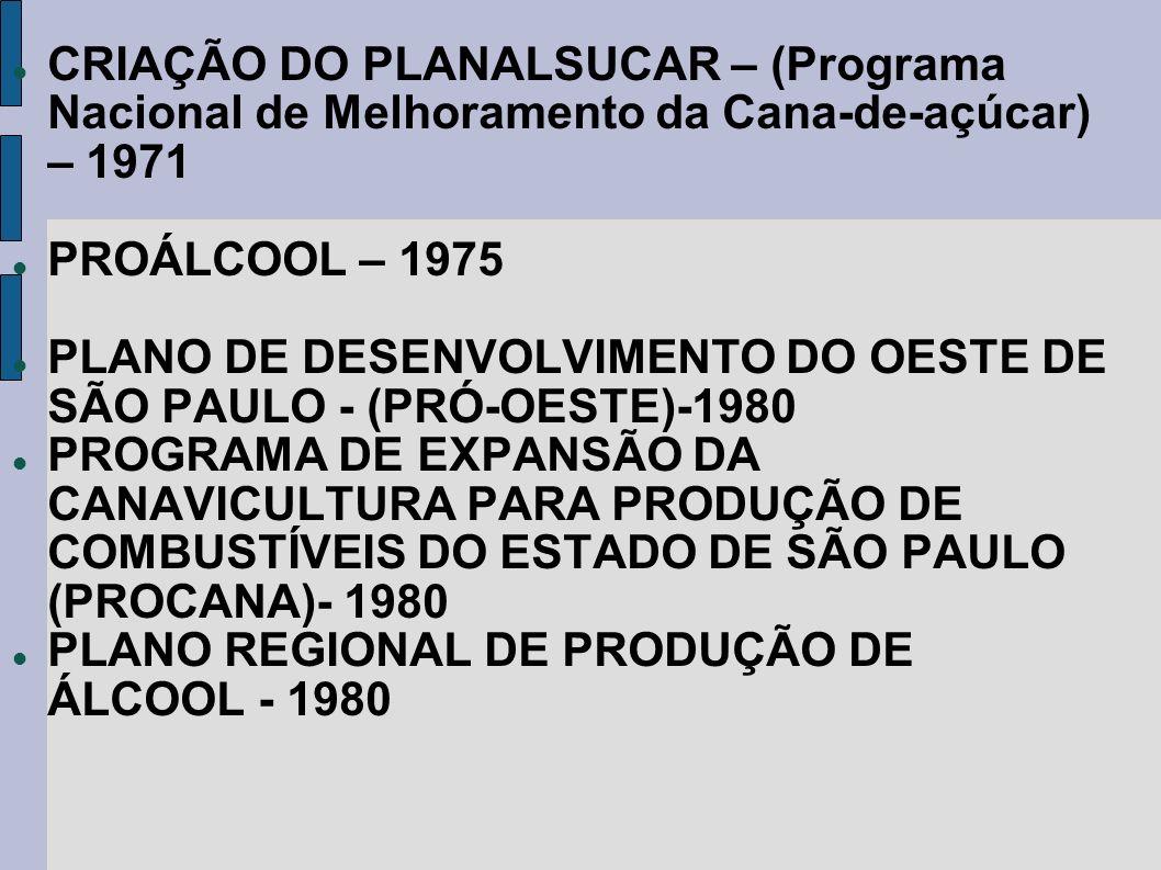 CRIAÇÃO DO PLANALSUCAR – (Programa Nacional de Melhoramento da Cana-de-açúcar) – 1971 PROÁLCOOL – 1975 PLANO DE DESENVOLVIMENTO DO OESTE DE SÃO PAULO
