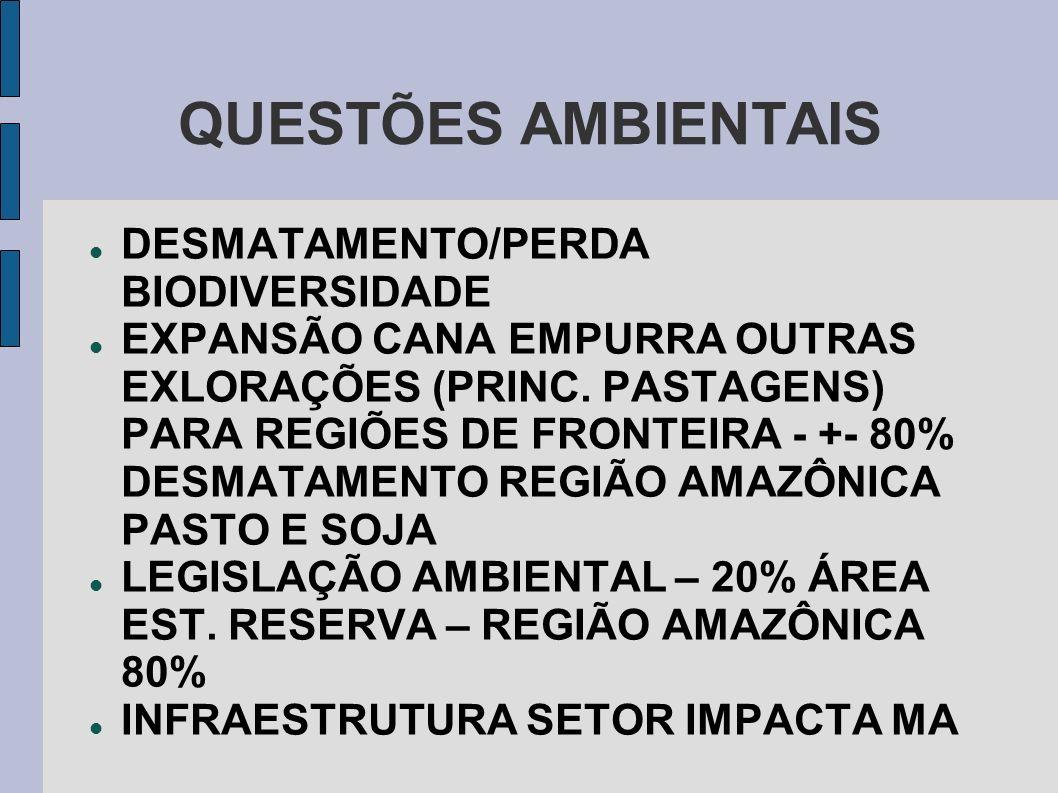 QUESTÕES AMBIENTAIS DESMATAMENTO/PERDA BIODIVERSIDADE EXPANSÃO CANA EMPURRA OUTRAS EXLORAÇÕES (PRINC. PASTAGENS) PARA REGIÕES DE FRONTEIRA - +- 80% DE
