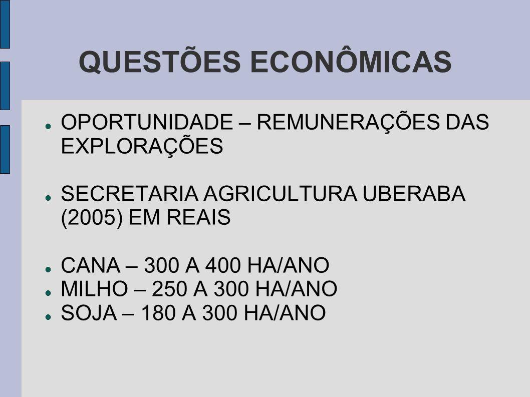 QUESTÕES ECONÔMICAS OPORTUNIDADE – REMUNERAÇÕES DAS EXPLORAÇÕES SECRETARIA AGRICULTURA UBERABA (2005) EM REAIS CANA – 300 A 400 HA/ANO MILHO – 250 A 3