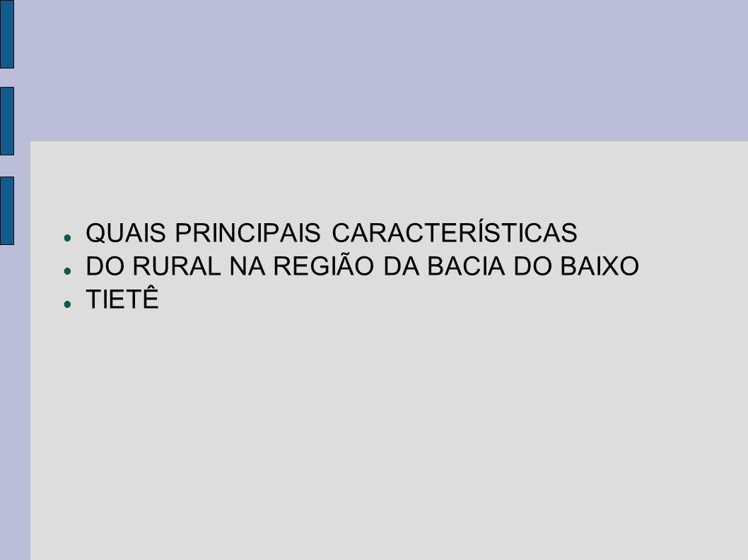 QUAIS PRINCIPAIS CARACTERÍSTICAS DO RURAL NA REGIÃO DA BACIA DO BAIXO TIETÊ