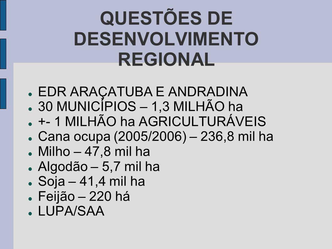 QUESTÕES DE DESENVOLVIMENTO REGIONAL EDR ARAÇATUBA E ANDRADINA 30 MUNICÍPIOS – 1,3 MILHÃO ha +- 1 MILHÃO ha AGRICULTURÁVEIS Cana ocupa (2005/2006) – 2