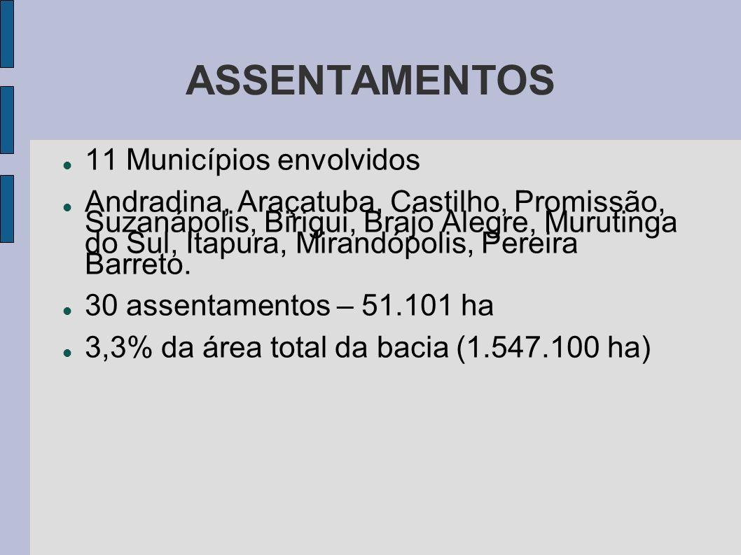 ASSENTAMENTOS 11 Municípios envolvidos Andradina, Araçatuba, Castilho, Promissão, Suzanápolis, Birigui, Brajo Alegre, Murutinga do Sul, Itapura, Miran