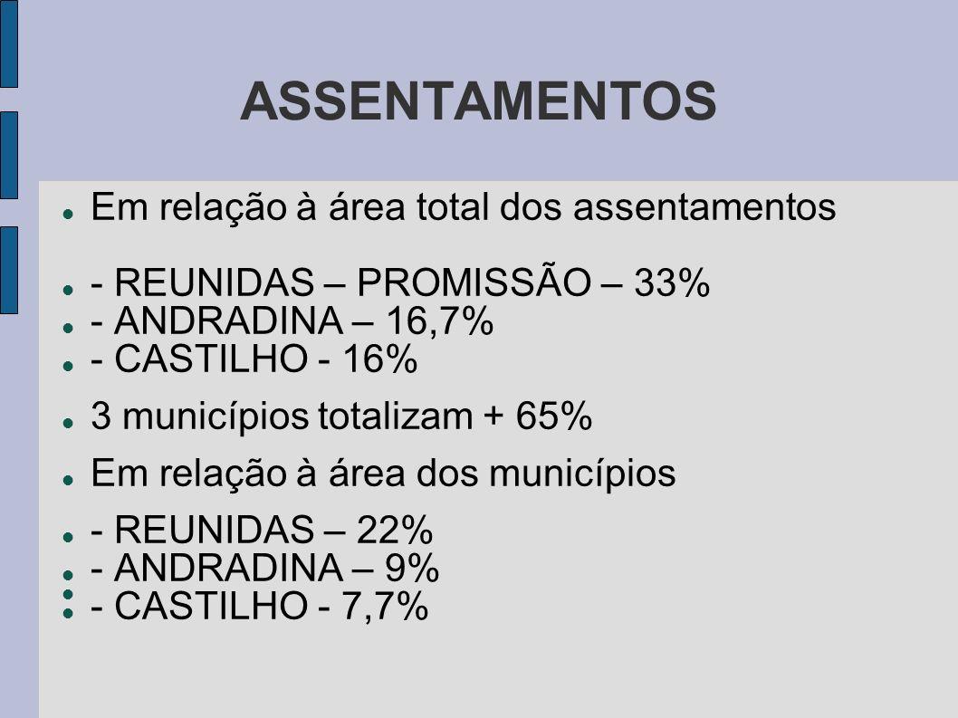 ASSENTAMENTOS Em relação à área total dos assentamentos - REUNIDAS – PROMISSÃO – 33% - ANDRADINA – 16,7% - CASTILHO - 16% 3 municípios totalizam + 65%