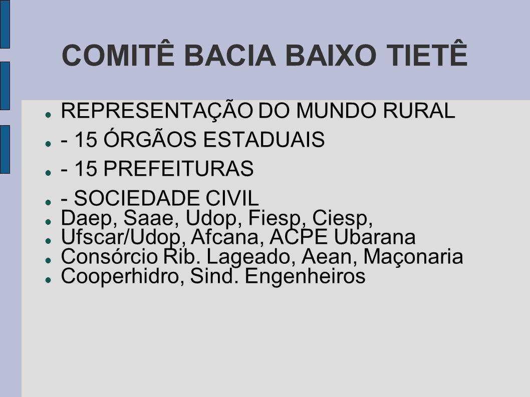 COMITÊ BACIA BAIXO TIETÊ REPRESENTAÇÃO DO MUNDO RURAL - 15 ÓRGÃOS ESTADUAIS - 15 PREFEITURAS - SOCIEDADE CIVIL Daep, Saae, Udop, Fiesp, Ciesp, Ufscar/