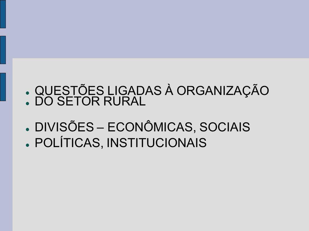 QUESTÕES LIGADAS À ORGANIZAÇÃO DO SETOR RURAL DIVISÕES – ECONÔMICAS, SOCIAIS POLÍTICAS, INSTITUCIONAIS
