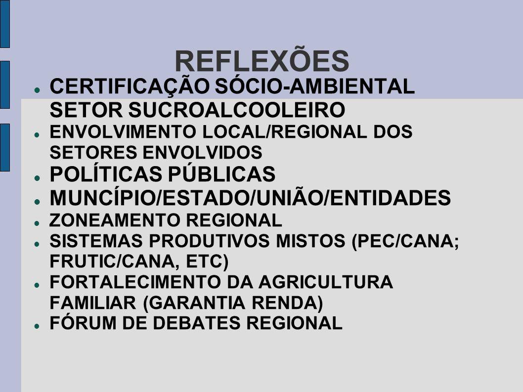 REFLEXÕES CERTIFICAÇÃO SÓCIO-AMBIENTAL SETOR SUCROALCOOLEIRO ENVOLVIMENTO LOCAL/REGIONAL DOS SETORES ENVOLVIDOS POLÍTICAS PÚBLICAS MUNCÍPIO/ESTADO/UNI