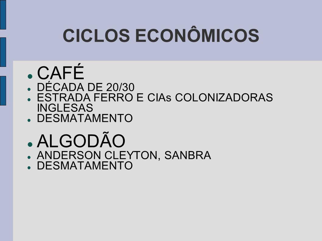 CICLOS ECONÔMICOS CAFÉ DÉCADA DE 20/30 ESTRADA FERRO E CIAs COLONIZADORAS INGLESAS DESMATAMENTO ALGODÃO ANDERSON CLEYTON, SANBRA DESMATAMENTO