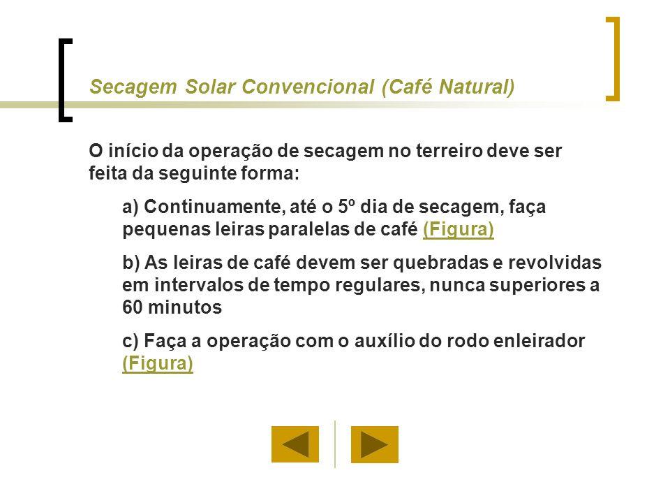 a) Depois da meia-seca (30% b.u.), secar em leiras maiores (Figura)(Figura) b) O café deve ser revolvido diariamente, e exposto durante 2 ou 3 horas ao sol e ser coberto novamente (Figura) (Figura) Secagem Solar (Café Natural)