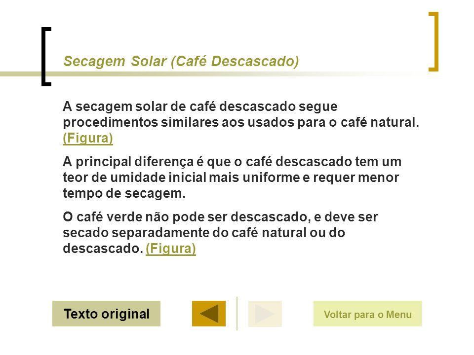 Evitar trabalhar com frutos não uniformes Métodos de Secagem do Café Voltar
