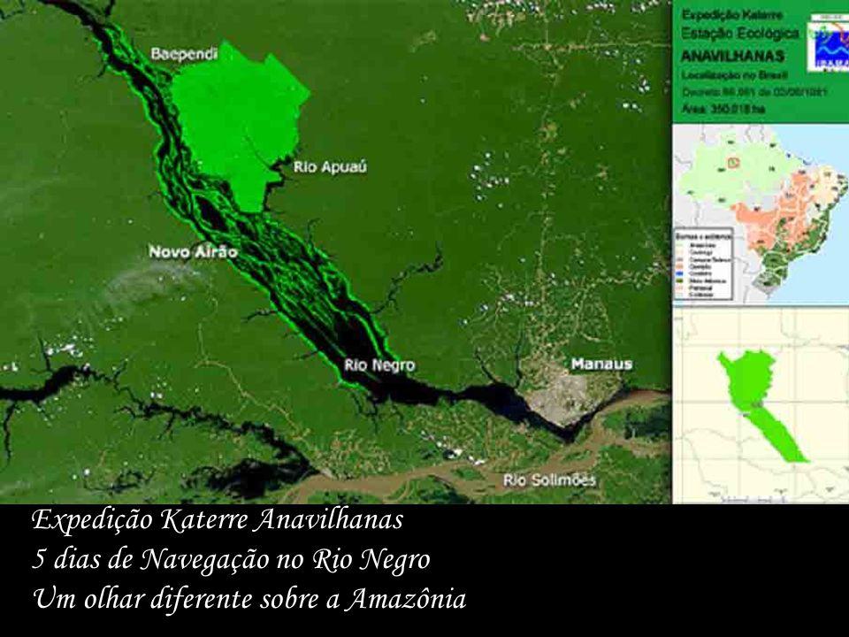 Expedição Katerre Anavilhanas 5 dias de Navegação no Rio Negro Um olhar diferente sobre a Amazônia