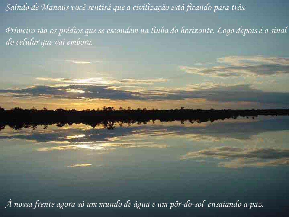 Saindo de Manaus você sentirá que a civilização está ficando para trás. Primeiro são os prédios que se escondem na linha do horizonte. Logo depois é o