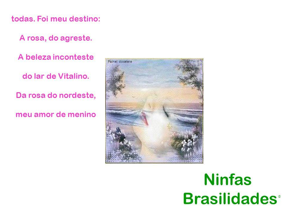 todas. Foi meu destino: A rosa, do agreste. A beleza inconteste do lar de Vitalino. Da rosa do nordeste, meu amor de menino Ninfas Brasilidades Painel
