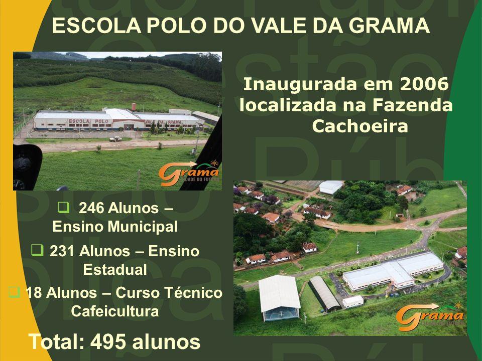 ESCOLA POLO DO VALE DA GRAMA Inaugurada em 2006 localizada na Fazenda Cachoeira 246 Alunos – Ensino Municipal 231 Alunos – Ensino Estadual 18 Alunos –