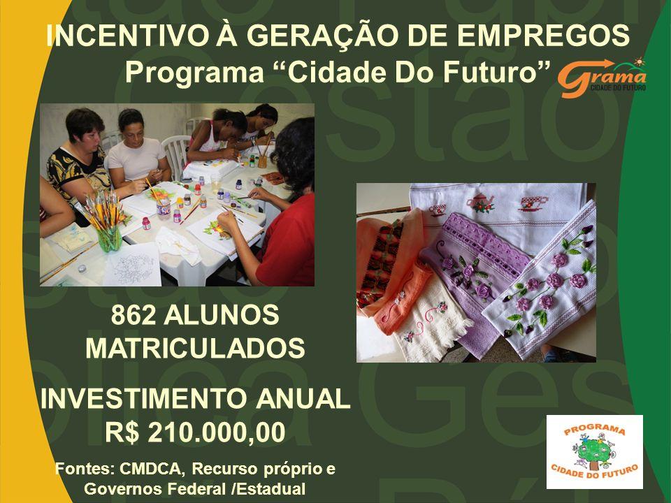 INCENTIVO À GERAÇÃO DE EMPREGOS Programa Cidade Do Futuro 862 ALUNOS MATRICULADOS INVESTIMENTO ANUAL R$ 210.000,00 Fontes: CMDCA, Recurso próprio e Go