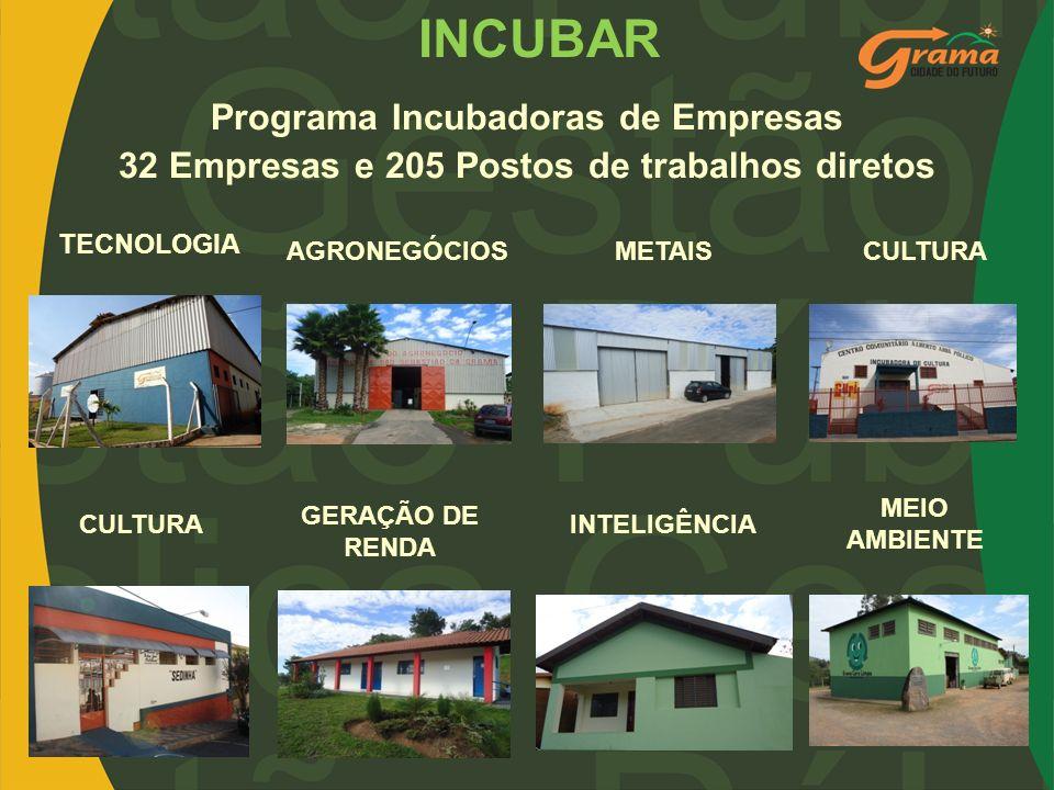 Programa Incubadoras de Empresas 32 Empresas e 205 Postos de trabalhos diretos TECNOLOGIA AGRONEGÓCIOSMETAISCULTURA GERAÇÃO DE RENDA INTELIGÊNCIA MEIO