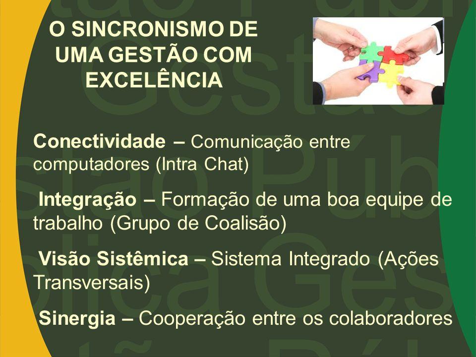 Conectividade – Comunicação entre computadores (Intra Chat) Integração – Formação de uma boa equipe de trabalho (Grupo de Coalisão) Visão Sistêmica –
