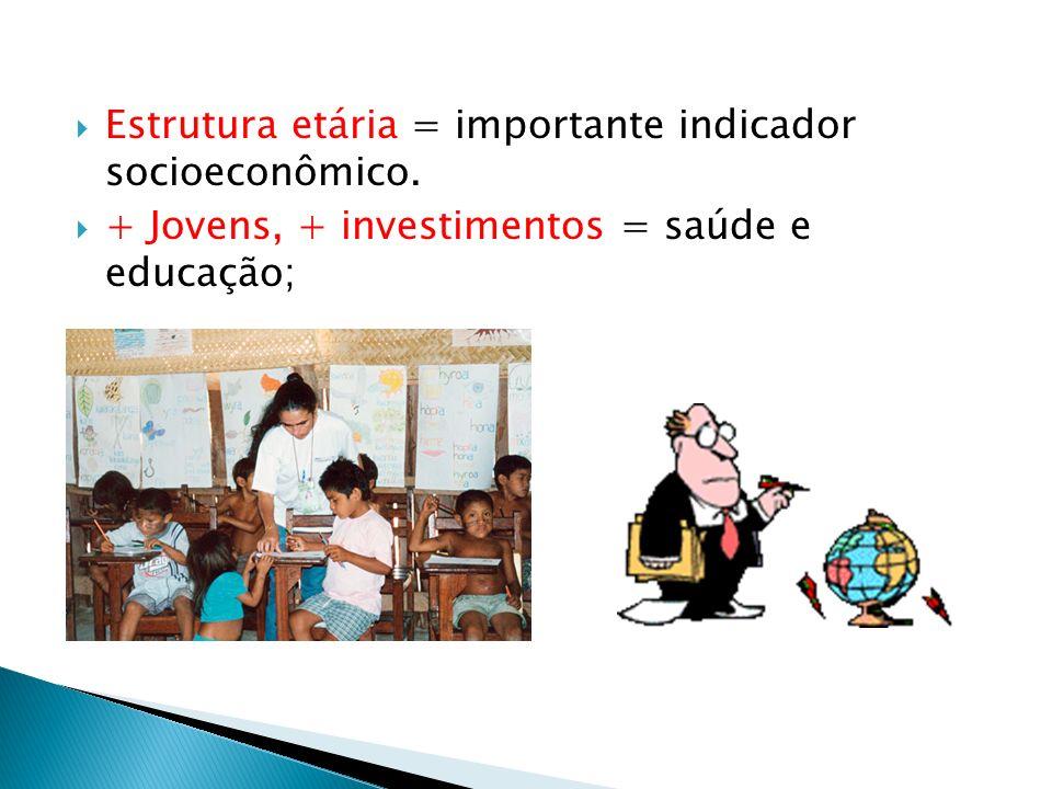 Estrutura etária = importante indicador socioeconômico. + Jovens, + investimentos = saúde e educação;