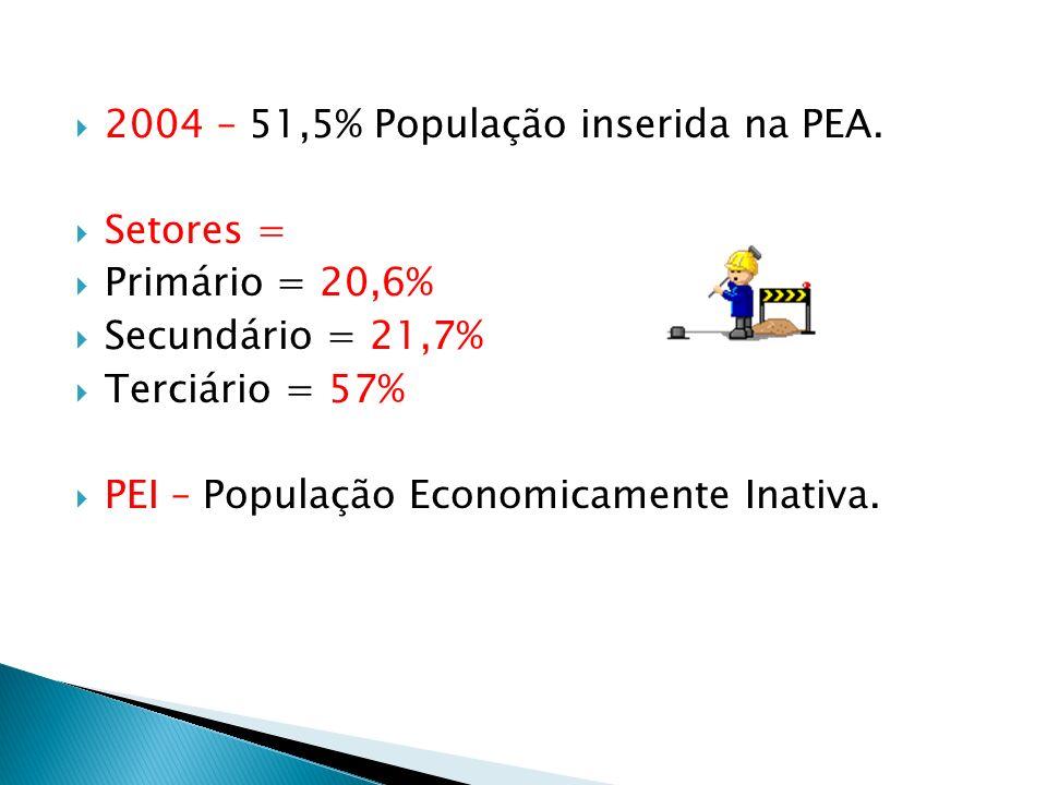 2004 – 51,5% População inserida na PEA. Setores = Primário = 20,6% Secundário = 21,7% Terciário = 57% PEI – População Economicamente Inativa.