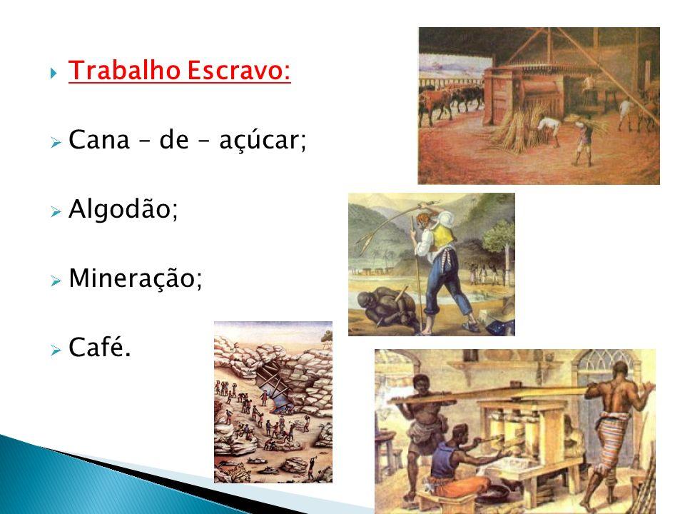Trabalho Escravo: Cana – de – açúcar; Algodão; Mineração; Café.