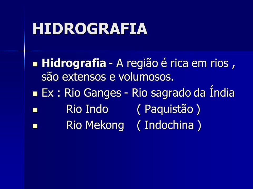 HIDROGRAFIA Hidrografia - A região é rica em rios, são extensos e volumosos. Hidrografia - A região é rica em rios, são extensos e volumosos. Ex : Rio