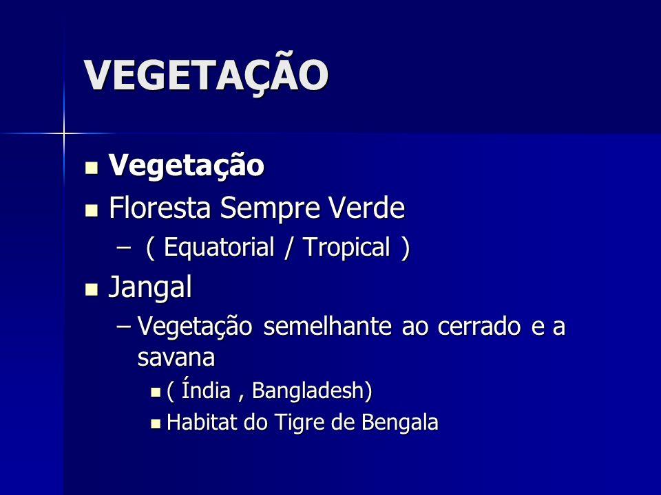 VEGETAÇÃO Vegetação Vegetação Floresta Sempre Verde Floresta Sempre Verde – ( Equatorial / Tropical ) Jangal Jangal –Vegetação semelhante ao cerrado e