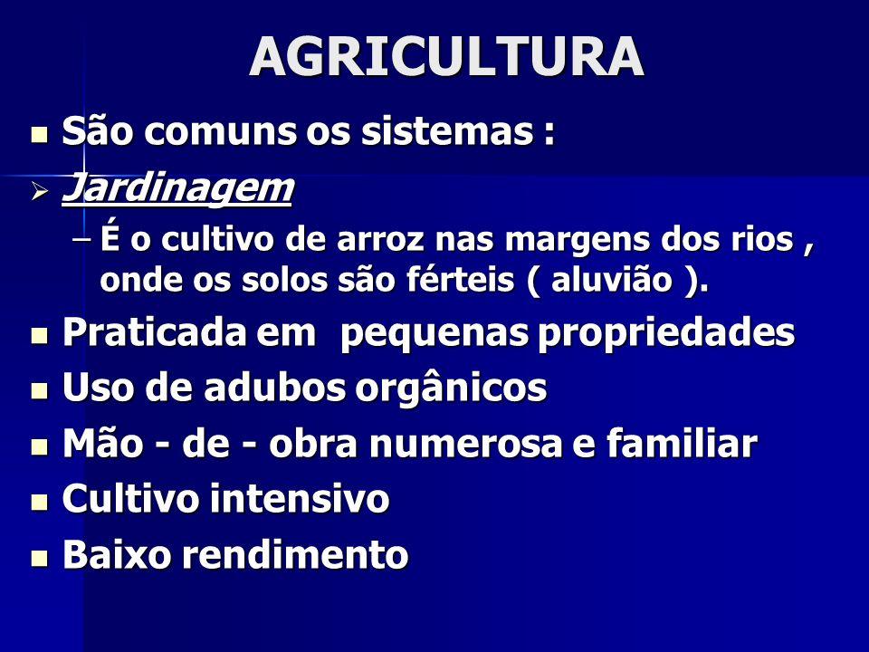 AGRICULTURA São comuns os sistemas : São comuns os sistemas : Jardinagem Jardinagem –É o cultivo de arroz nas margens dos rios, onde os solos são fért
