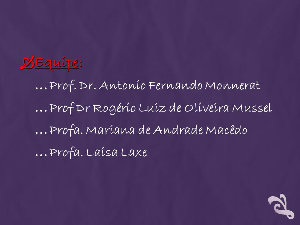 Equipe: Equipe: … Prof. Dr. Antonio Fernando Monnerat … Prof Dr Rogério Luiz de Oliveira Mussel … Profa. Mariana de Andrade Macêdo … Profa. Laisa Laxe