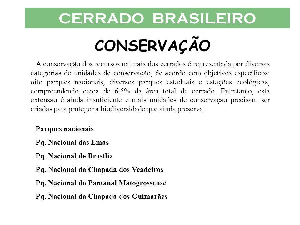 CERRADO BRASILEIRO CONSERVAÇÃO A conservação dos recursos naturais dos cerrados é representada por diversas categorias de unidades de conservação, de