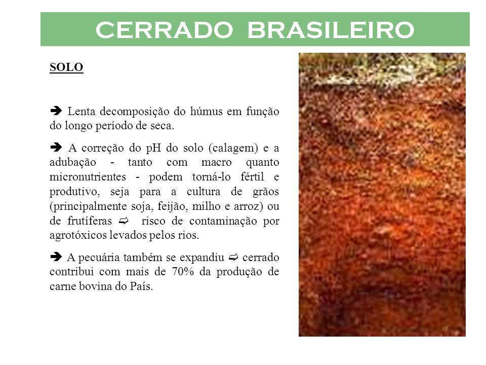 CERRADO BRASILEIRO SOLO Lenta decomposição do húmus em função do longo período de seca. A correção do pH do solo (calagem) e a adubação - tanto com ma