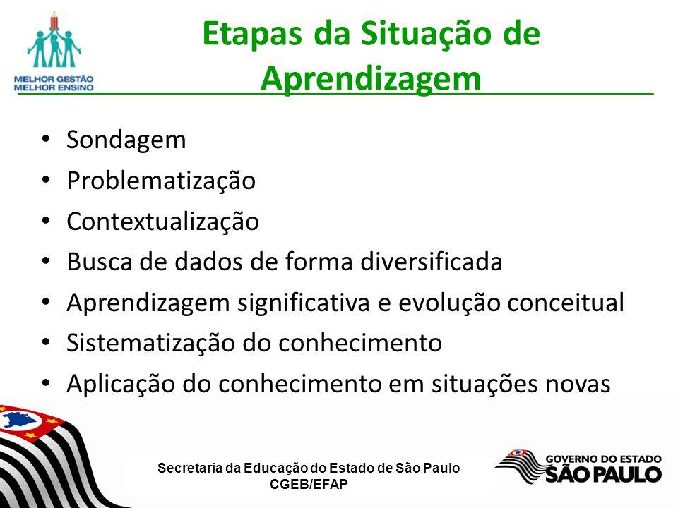 Secretaria da Educação do Estado de São Paulo CGEB/EFAP Etapas da Situação de Aprendizagem Sondagem Problematização Contextualização Busca de dados de forma diversificada Aprendizagem significativa e evolução conceitual Sistematização do conhecimento Aplicação do conhecimento em situações novas
