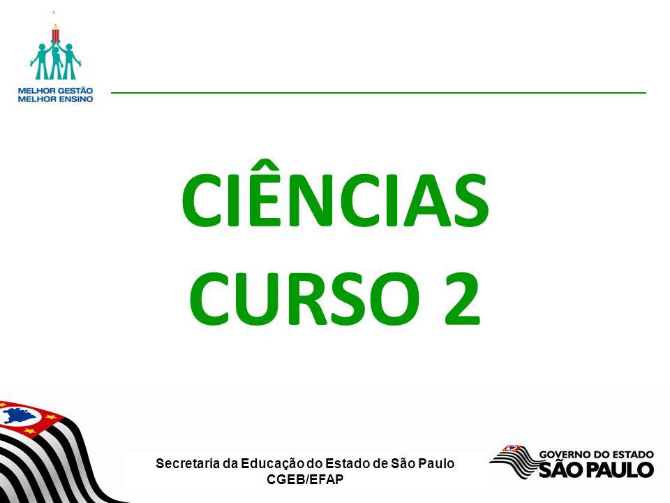 Secretaria da Educação do Estado de São Paulo CGEB/EFAP CIÊNCIAS CURSO 2