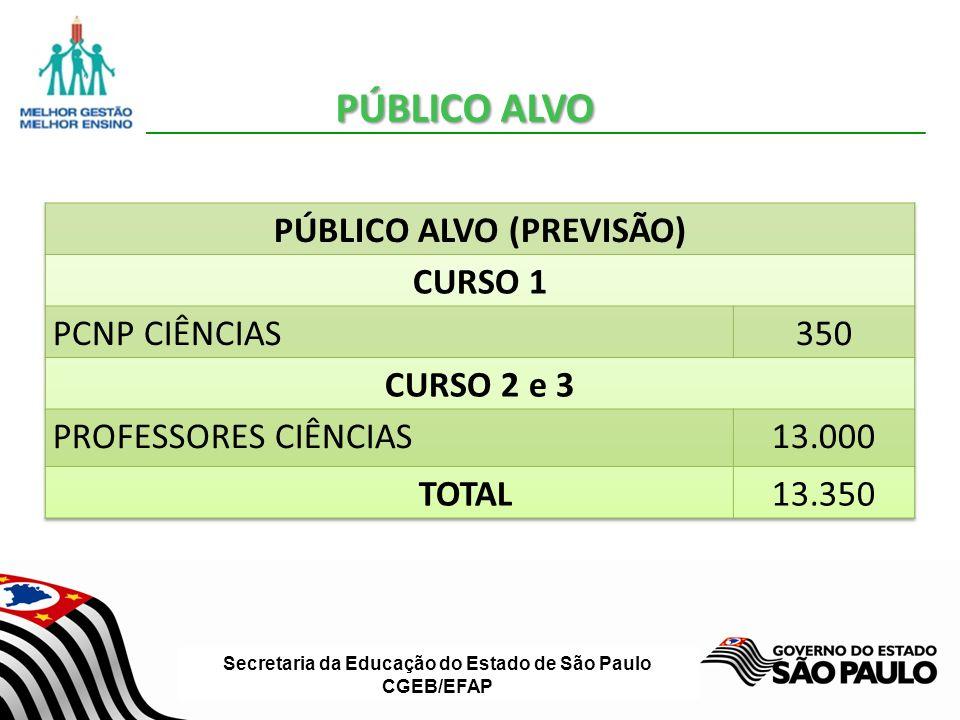 Secretaria da Educação do Estado de São Paulo CGEB/EFAP ETAPAS DE EXECUÇÃO DOS CURSOS