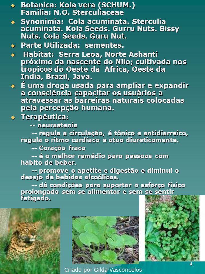 4 Botanica: Kola vera (SCHUM.) Familia: N.O.