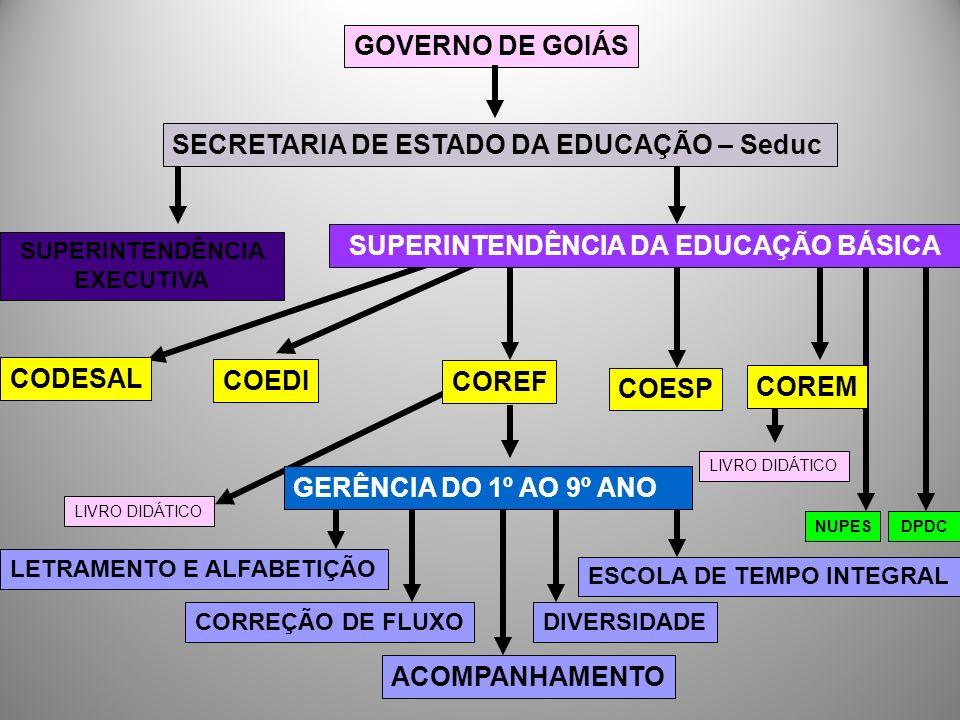 Encontros temáticos: Para formação de gestores da Escola Estadual de Tempo Integral; Com coordenadores das unidades escolares que desenvolvem a correção de fluxo;