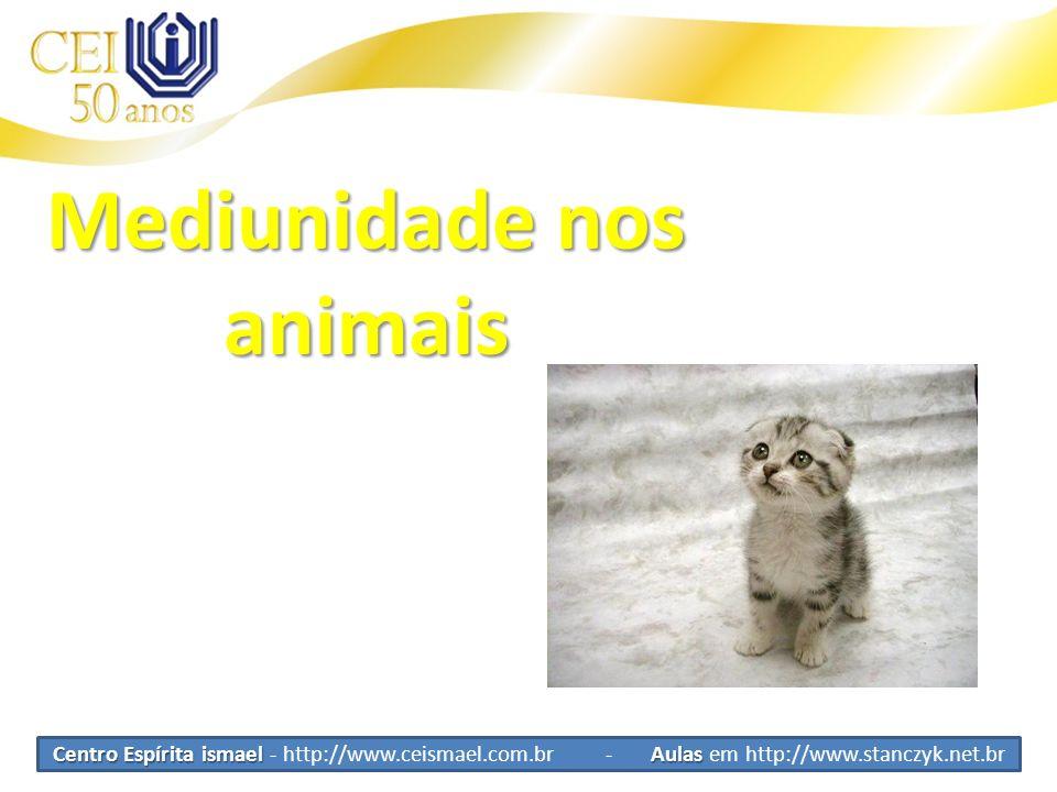 Centro Espírita ismael Aulas Centro Espírita ismael - http://www.ceismael.com.br - Aulas em http://www.stanczyk.net.br Mediunidade nos animais