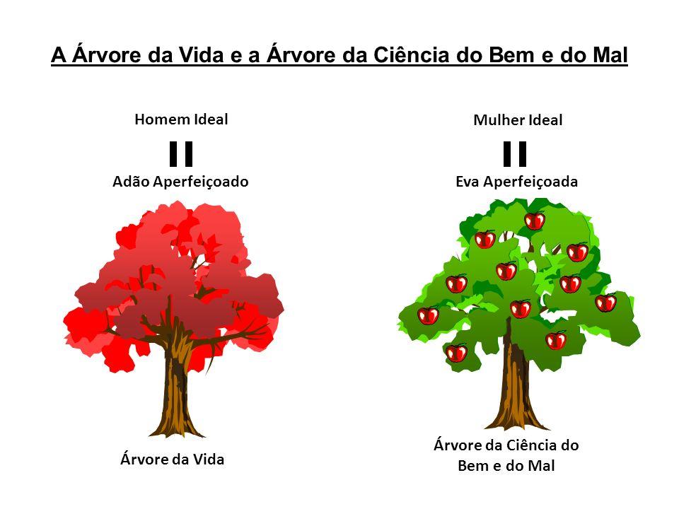 A Árvore da Vida e a Árvore da Ciência do Bem e do Mal Árvore da Vida Árvore da Ciência do Bem e do Mal Homem Ideal Adão Aperfeiçoado Mulher Ideal Eva
