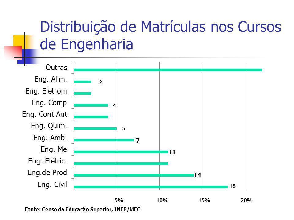 Distribuição de Matrículas nos Cursos de Engenharia 5% 10% 15% 20% Fonte: Censo da Educação Superior, INEP/MEC 18