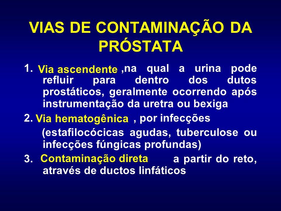 VIAS DE CONTAMINAÇÃO DA PRÓSTATA 1.,na qual a urina pode refluir para dentro dos dutos prostáticos, geralmente ocorrendo após instrumentação da uretra