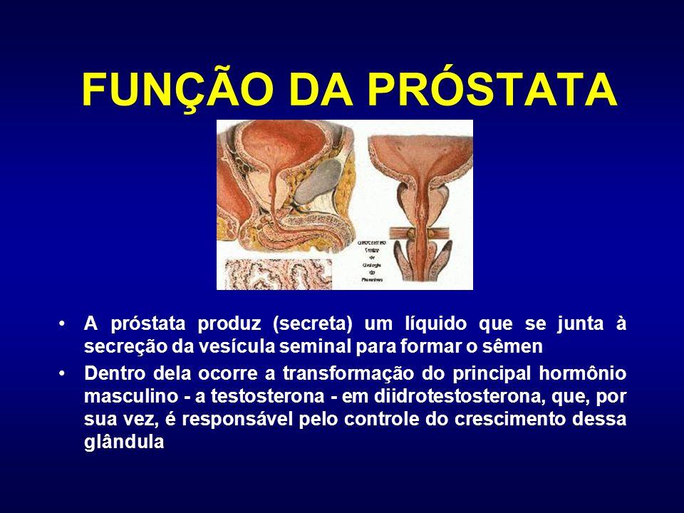 FUNÇÃO DA PRÓSTATA A próstata produz (secreta) um líquido que se junta à secreção da vesícula seminal para formar o sêmen Dentro dela ocorre a transfo