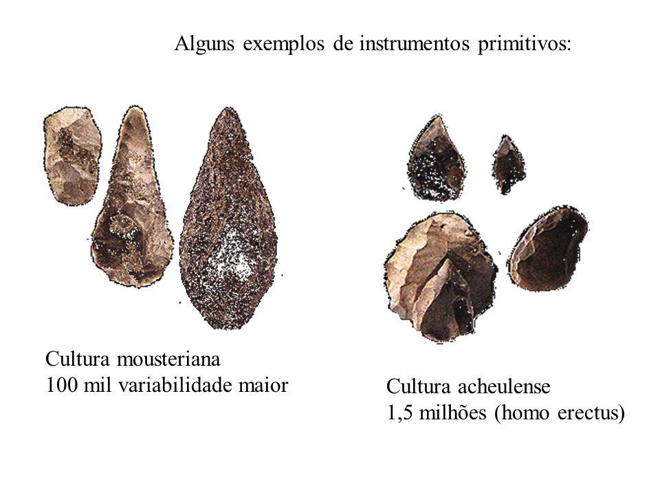 Cultura mousteriana 100 mil variabilidade maior Cultura acheulense 1,5 milhões (homo erectus) Alguns exemplos de instrumentos primitivos: