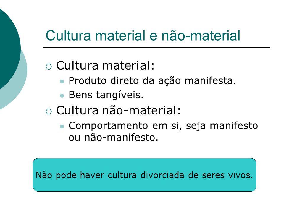 Cultura material e não-material Cultura material: Produto direto da ação manifesta. Bens tangíveis. Cultura não-material: Comportamento em si, seja ma
