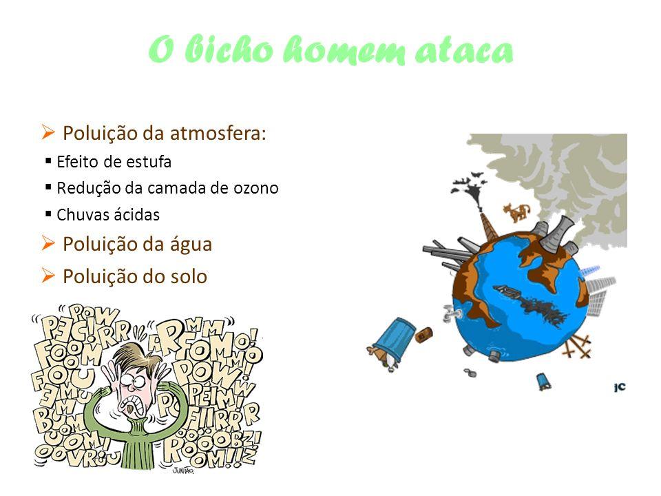 O bicho homem ataca Poluição da atmosfera: Efeito de estufa Redução da camada de ozono Chuvas ácidas Poluição da água Poluição do solo