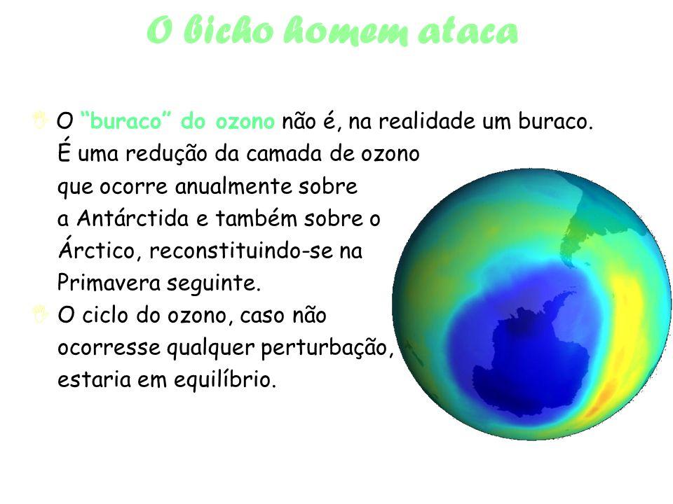 O bicho homem ataca O buraco do ozono não é, na realidade um buraco.