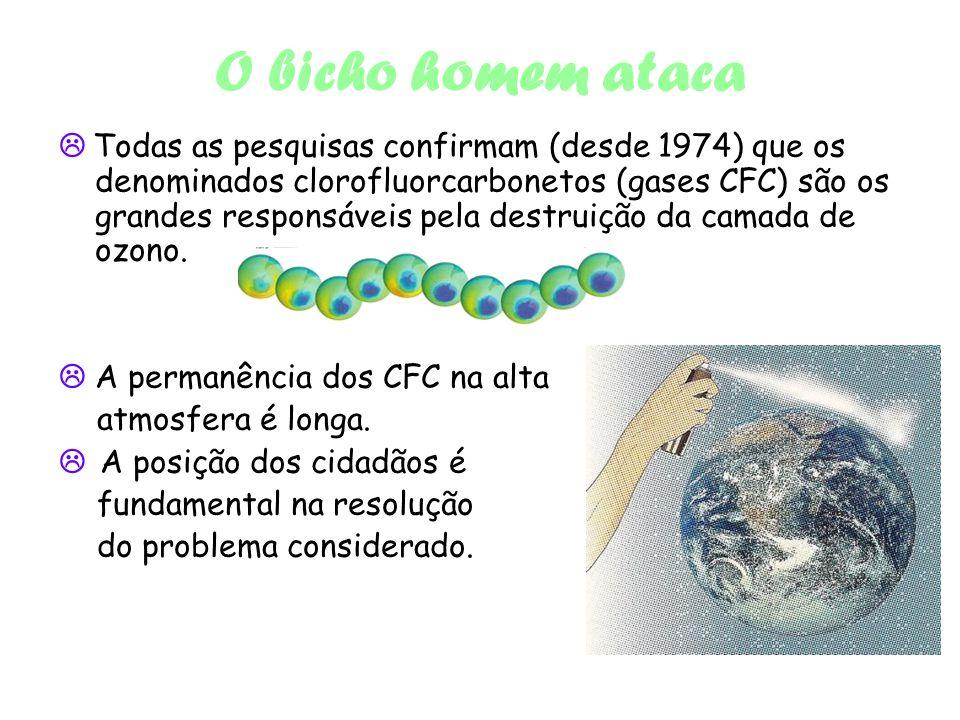 O bicho homem ataca Todas as pesquisas confirmam (desde 1974) que os denominados clorofluorcarbonetos (gases CFC) são os grandes responsáveis pela destruição da camada de ozono.