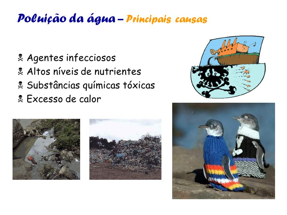 Poluição da água – Principais causas Agentes infecciosos Altos níveis de nutrientes Substâncias químicas tóxicas Excesso de calor